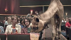 geico.camel